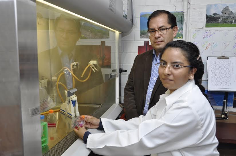 Prueban científicos del IPN fármaco vegetal con propiedades ...